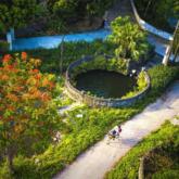 Giếng làng cổ ở Cố đô Hoa Lư – nơi lưu giữ hồn quê Việt