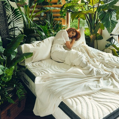 Brentwood Home – Khi thiên nhiên vỗ về giấc ngủ