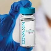 Giới chuyên gia: Vaccine COVID-19 không ảnh hưởng khả năng sinh sản