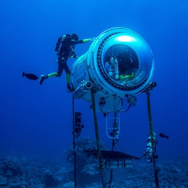 """Rolex ra mắt phim tài liệu """"Perpetual Planet: Những anh hùng của Đại dương"""""""