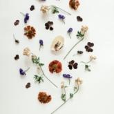 """""""Thổi"""" thiên nhiên vào nhà bằng những bó hoa khô"""