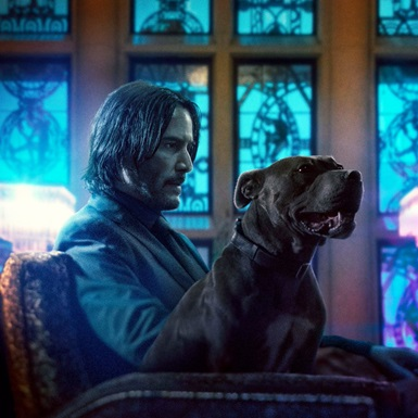 John Wick phần 3 chính thức trở lại màn ảnh rộng với màn khai tử đắt đỏ nhất